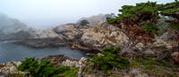 Point_Lobos_1104.jpg