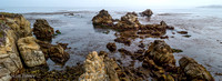 Point_Lobos_1313.jpg