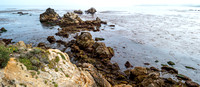 Point_Lobos_1309.jpg