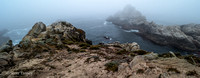 Point_Lobos_1097.jpg