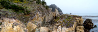Point_Lobos_1312.jpg