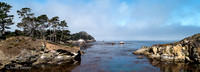 Point_Lobos_1401.jpg