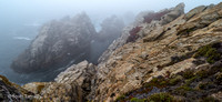 Point_Lobos_1091.jpg